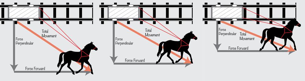 Horse Analogy
